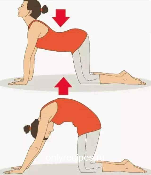 Ноет поясница? Три простых упражнения, чтобы ее «успокоить» 11