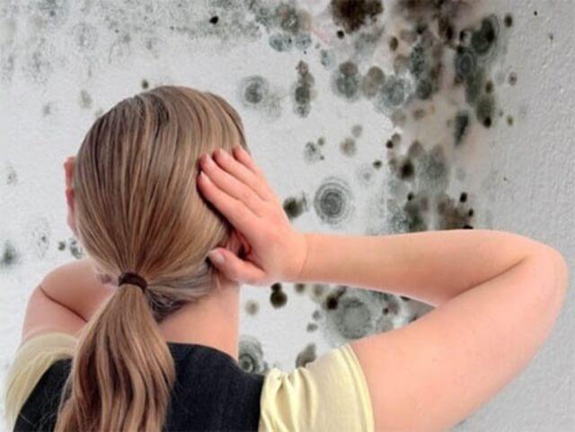 Суперсредство от плесени: убирает грибок на ура и никакого жуткого запаха! Довольна, что нашла 1