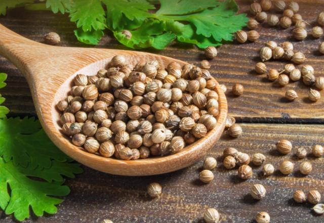 Как перезагрузить щитовидную железу при помощи семян кориандра всего за 8 дней 1