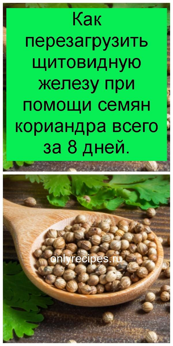 Как перезагрузить щитовидную железу при помощи семян кориандра всего за 8 дней 4