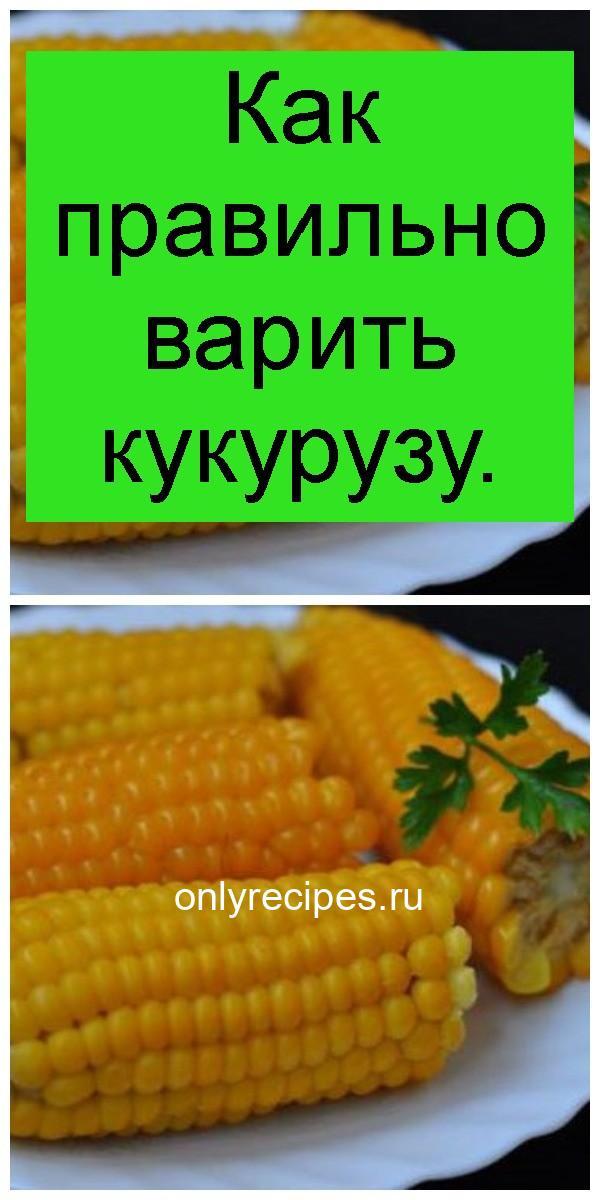 Как правильно варить кукурузу 4