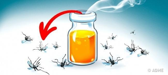 11-ubiystvennyh-aromatov-ot-komarov-11-5923734