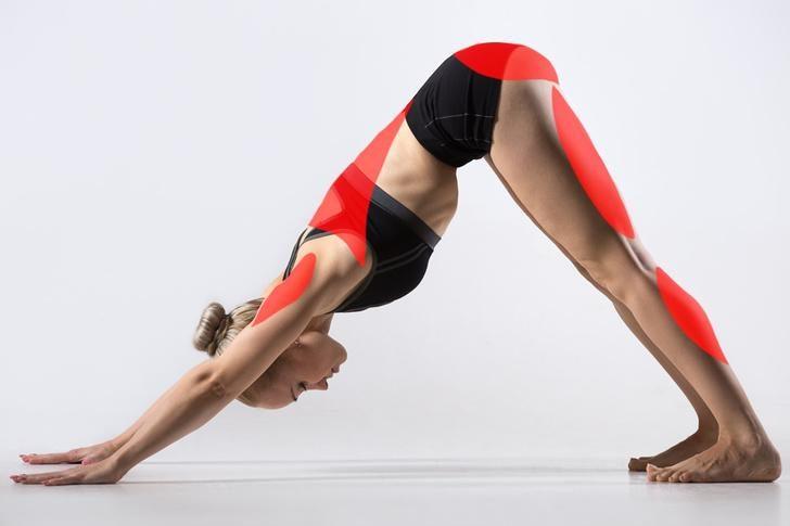 15-pozy-yogi-kotorye-mogut-izmenit-vashe-telo-1-2352063