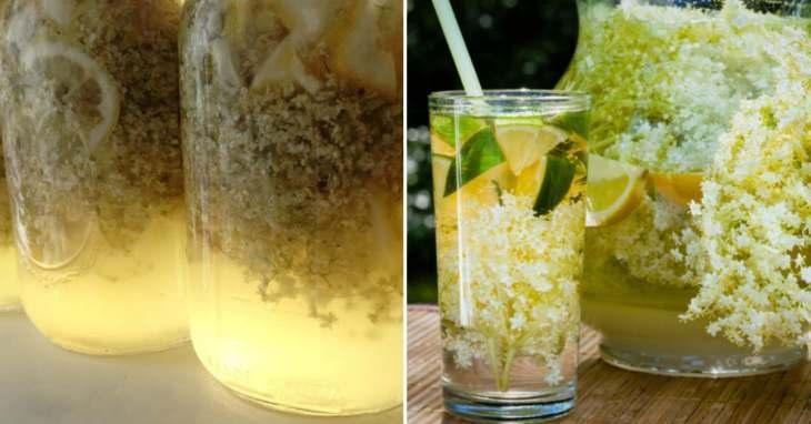 domashniy-limonad-iz-buziny-s-puzyr-kami-i-priyatnym-cvetom-4-8701473
