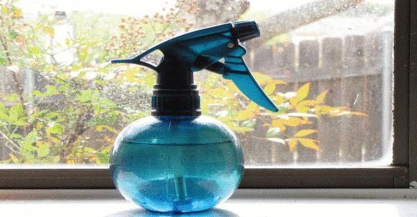 kak-prosto-i-deshevo-zaschitit-svoy-dom-ot-muh-i-komarov-6-4460509